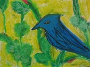 blue_jay_pearched_in_a_sweet_gum_tree