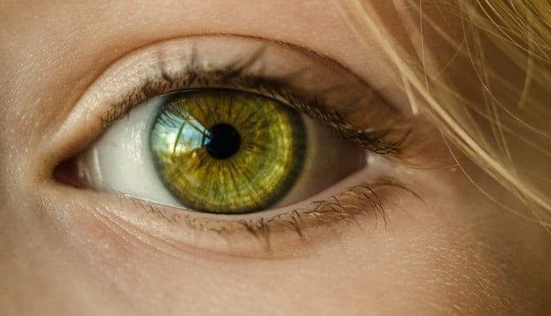 eyes measure hearing pupils