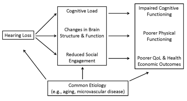Figure 1. There is a common etiology associated with hearing loss, cognition and social engagement. Source: www.linresearch.org.