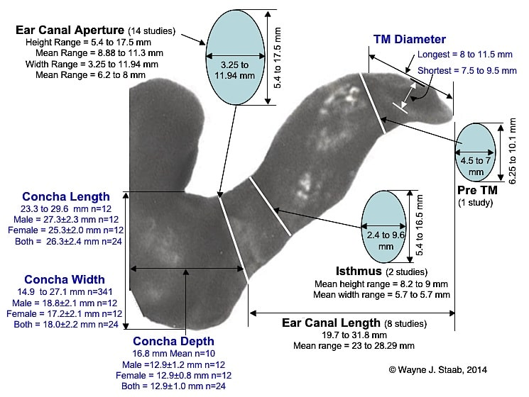 Figure 1.  Dimensions of the ear canal superimposed on an ear impression of the complete human ear canal.