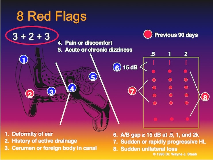 Figure 1. 2+3+2 Systematic Approach to navigate the 8 red flag medical contraindications mandated currently by the FDA.